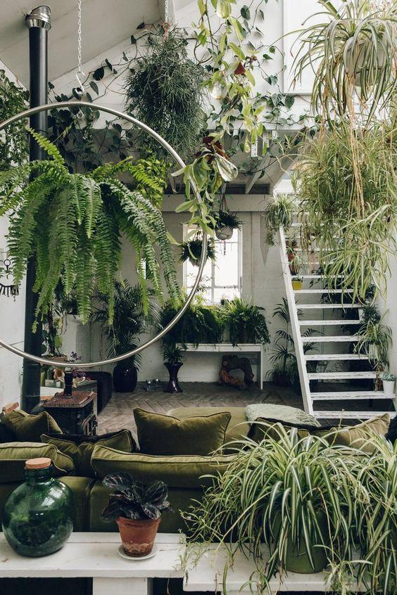 mequetrefismos-luiza-brasil-decoracao-plantas